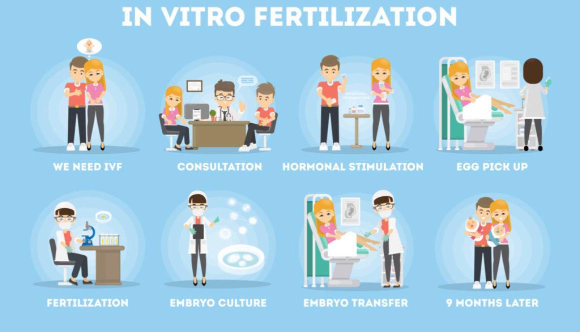 10 diferencias entre Inseminación Artificial y Fecundación in Vitro (FIV)