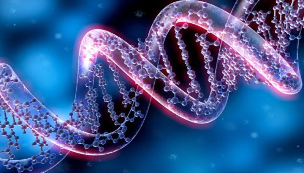 ¿Cómo se realiza la selección genética de embriones para lograr el embarazo?