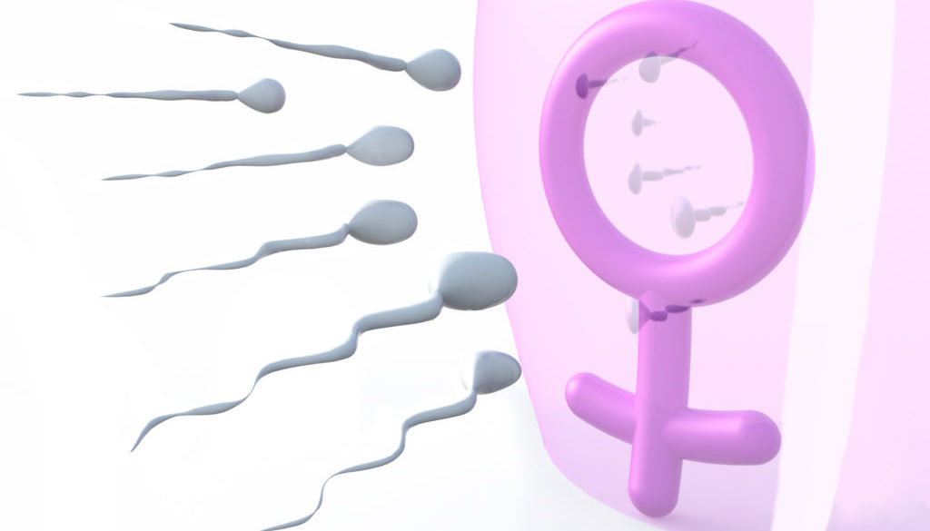 ¿Cuánto tiempo dura un espermatozoide vivo?