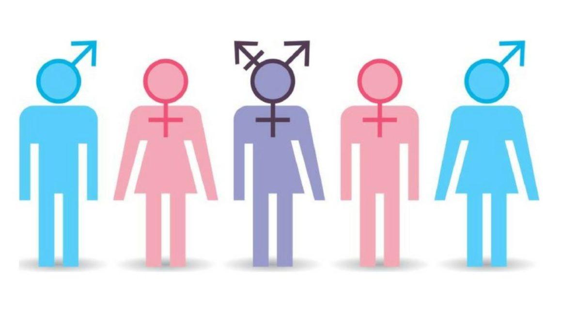 Científicos aseguran que el cromosoma masculino acabará desapareciendo