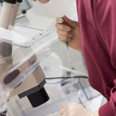 Embryologist adding sperm to egg