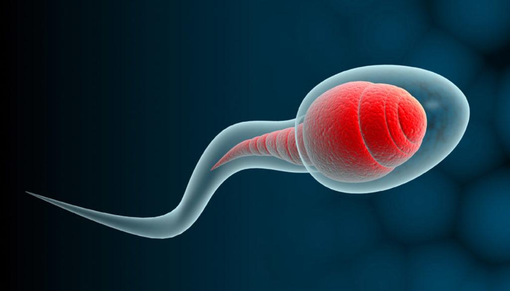 Consejos para aumentar la cantidad de esperma