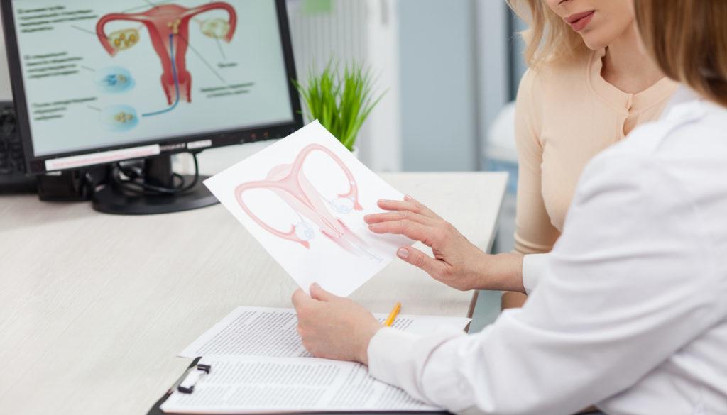 Desarrollo de los folículos en la estimulación ovárica: lo que debes saber