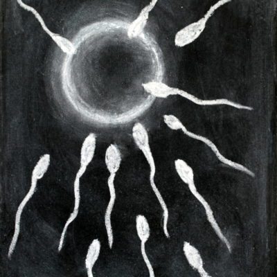 Fertilization of sperm and egg drawing with chalk on blackboard