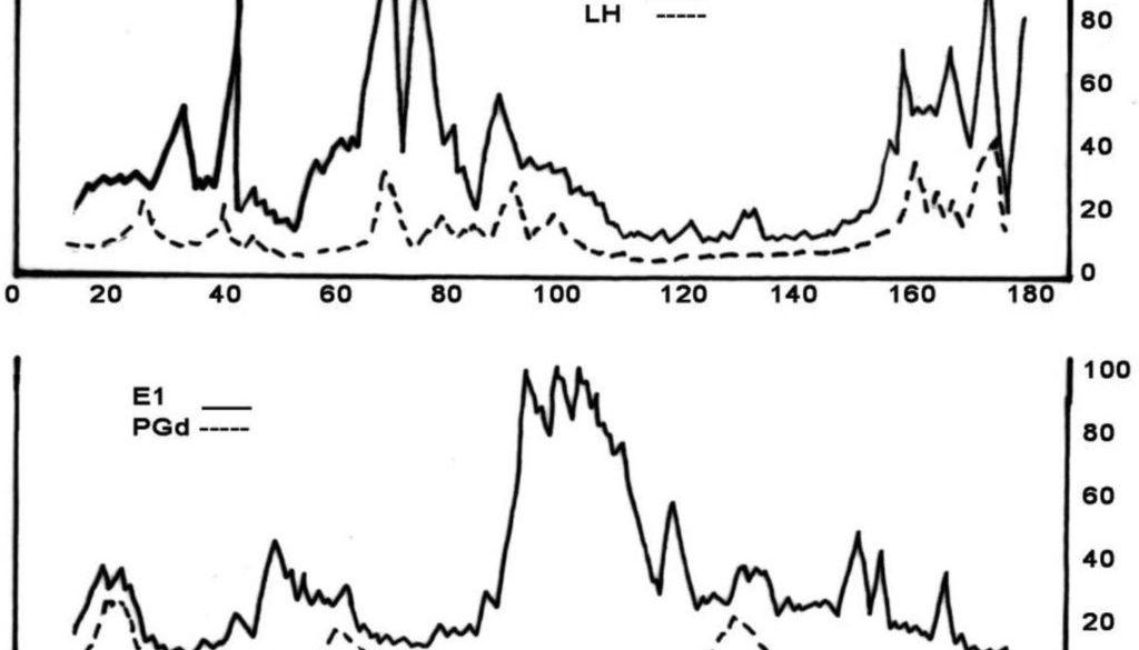 Hormona estimulante del folículo (o folículo-estimulante