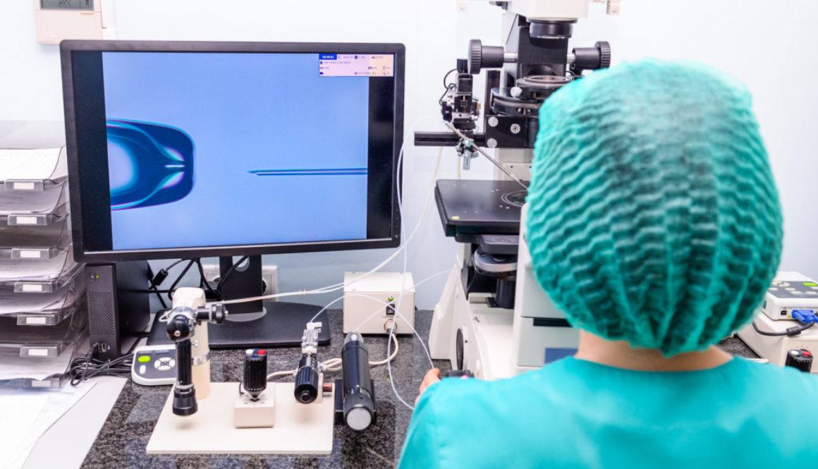 Investigadores de la UMU posibilitan nacimientos por reproducción asistida con menos riesgos