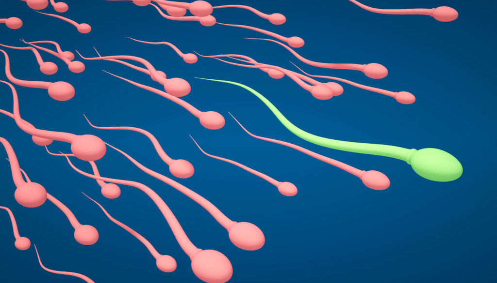Mitad de parejas con infertilidad logran tener un hijo
