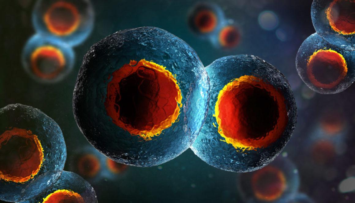 Posibilidades y riesgos de la fecundación in vitro (FIV)