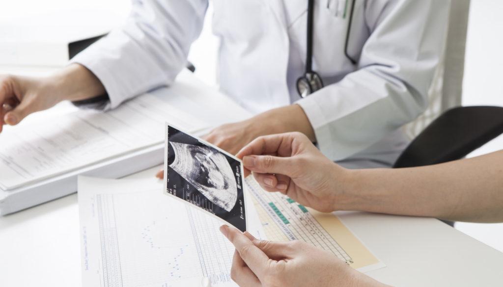 Primeros pasos en una clínica de reproducción asistida
