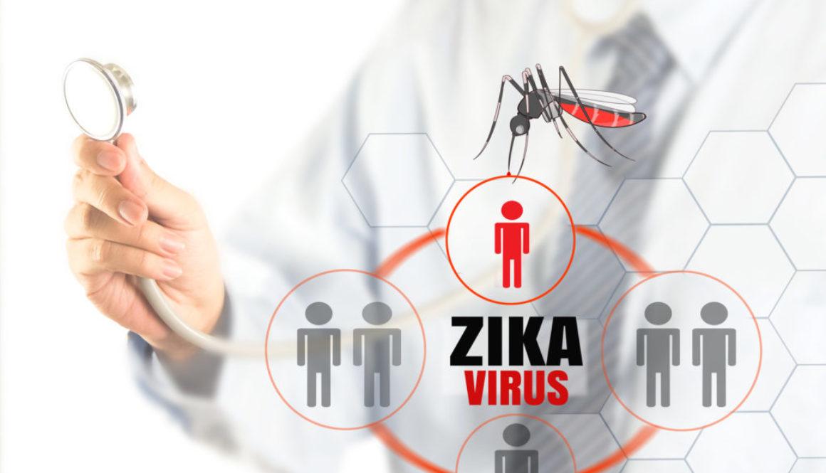 Segun un estudio el virus del Zika baja la testosterona y afecta los testículos