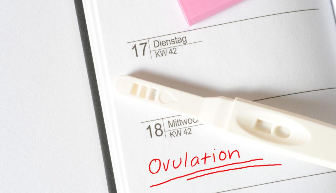 Técnicas de reproducción asistida: factores del éxito del embarazo