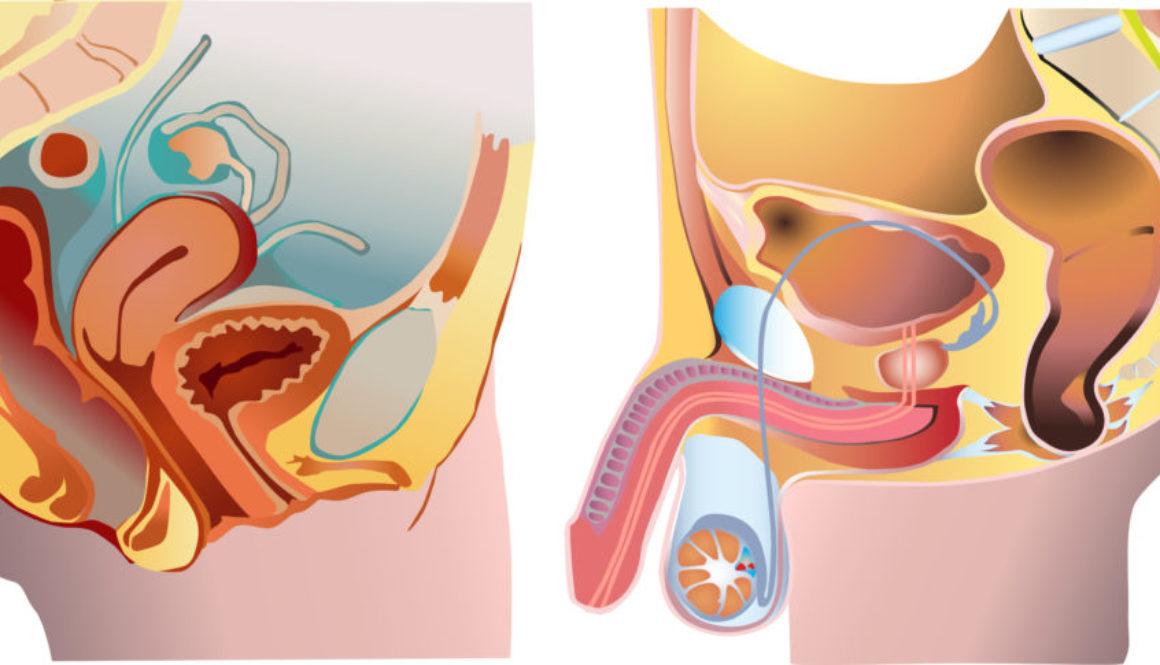Tratamientos quirúrgicos para la infertilidad
