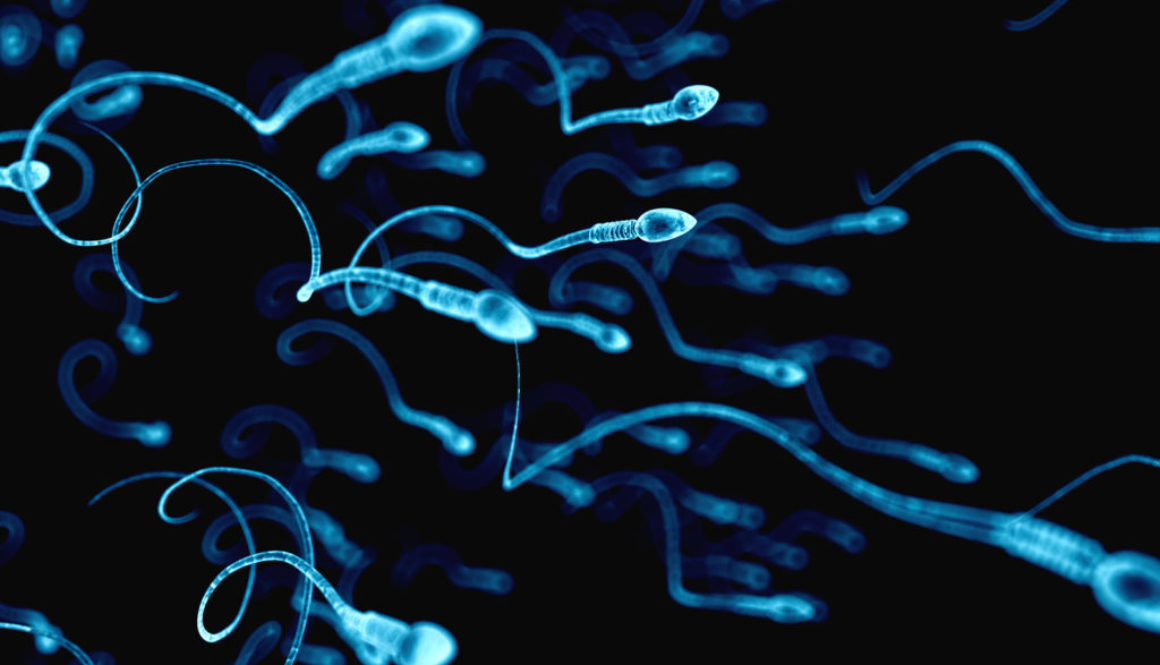 Un experto señala las soluciones para la infertilidad masculina asociada a la diabetes