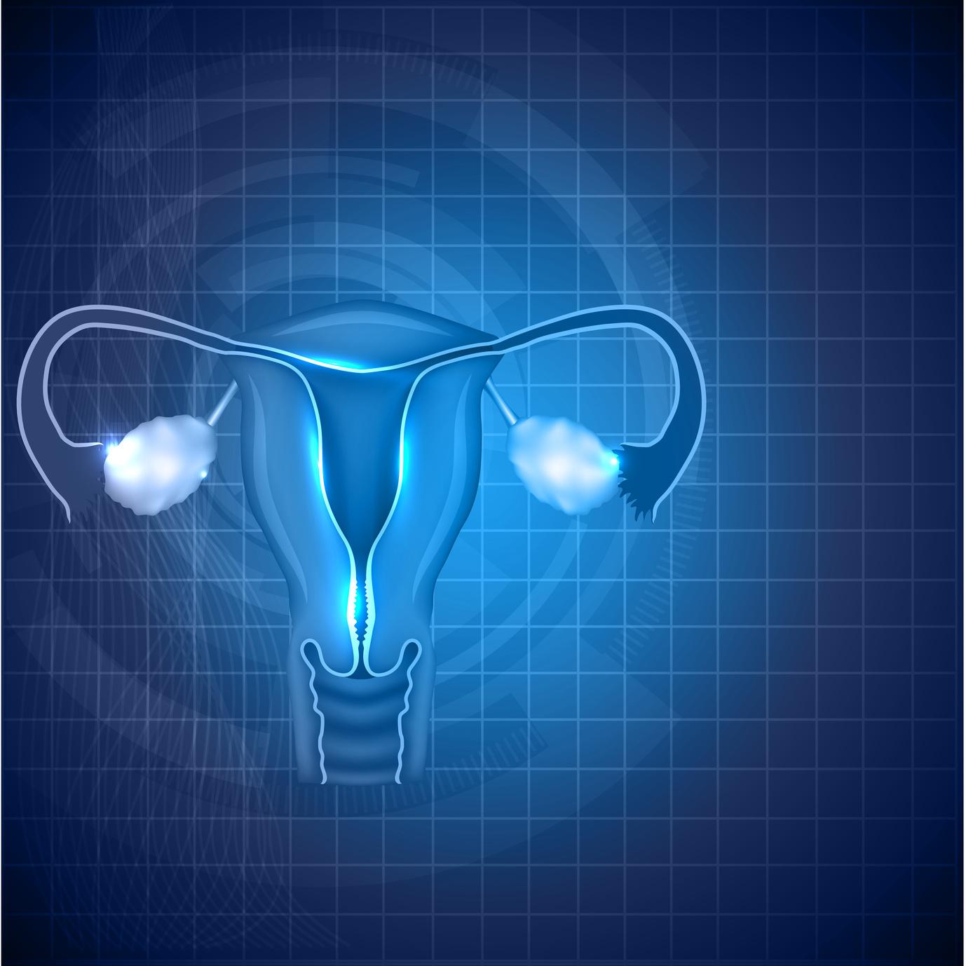 El uso del embryoscope, ¿podría ayudar en el resultado de la Ovo?